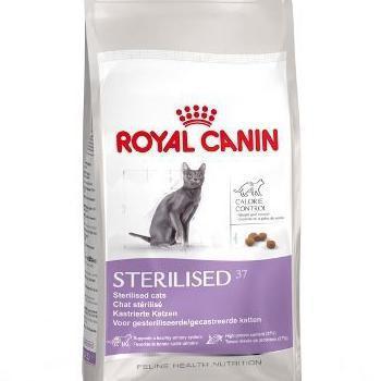 Корм royal canin or pro plan